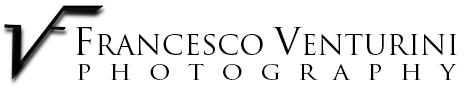 logo di Francesco Venturini